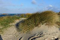 Saline Bay,Strand bei Grand Roques, Insel Guernsey, Kanalinseln