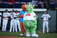 Burlington Sock Puppets mascots Bingo (left) and Socksquatch (right) prior to the USA Collegiate National team game between Team Stars and Team Stripes at Burlington Athletic Park on July 3, 2021, in Burlington, North Carolina. The Stripes beat the Stars 7-4. (Brian Westerholt/Four Seam Images)