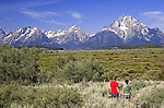 At popular Willow Flats Overlook on Highway 89, visitors crane necks and raise cameras to view the Teton Range, and often, Bison or Elk in the flats.  Grand Teton National Park, United States, Wyoming.