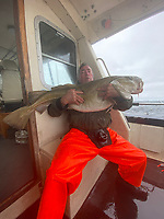 BNPS.co.uk (01202 558833)<br /> Pic: KennyGraham/BNPS<br /> <br /> Pictured: Angler Tony Unwin with the 50lb cod.<br /> <br /> It's cod-zilla..<br /> <br /> Angler Tony Unwin has been dubbed the codfather after catching a monster cod that weighed almost 50lbs and beat  43 year old record. <br /> The 4ft long specimen - the biggest ever caught in Scottish waters - was hooked by 60-year-old Tony during a fishing trip off the Shetland Isles.<br /> <br /> The grandfather, from Amble, Northumberland, defied his arthritis in his shoulder to reel in the monster cod after a 25 minute fight.