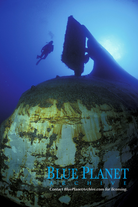 """Wreck of """"Anne"""" off Paradise Island. 110 min depth, vessel inverted on edge of wall."""