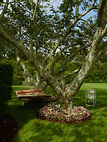 A flower bed of pretty pink and white flowers encircles the base of a tree. A hammock is strung between two trees and provides the perfect shady spot for relaxing in the garden.