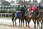 February 28, 2021: Miss Twenty #3 , ridden by Ramon A. Vazquez in the Dixie Belle Stakes for trainer Michael E. Lauer at Oaklawn Park in Hot Springs,  Arkansas.  Ted McClenning/Eclipse Sportswire/CSM