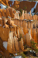 Early morning winter sun highlights hoodoos in Bryce Canyon National Park, Utah. Hoodoos are pinnacles or odd-shaped rock left standing by the forces of erosion. Technically not a canyon, most of the erosion at Bryce comes from the freezing and thawing of water, a prevalent occurence due to its high elevation of approximately 7,000 to 9,000 feet (2,133 - 2,743 m). In addition to ice, wind and water erosion also play a role.