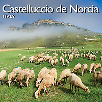 Pictures of Castelluccio de Norcia and the Piano Grande - Images & Photos -