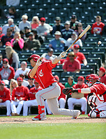 Connor Joe - Cincinnati Reds 2019 spring training (Bill Mitchell)
