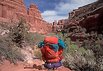 Backpack, Grand Gulch Primitive Area, Southeastern Utah, America's Southwest, red rock country, USA, .