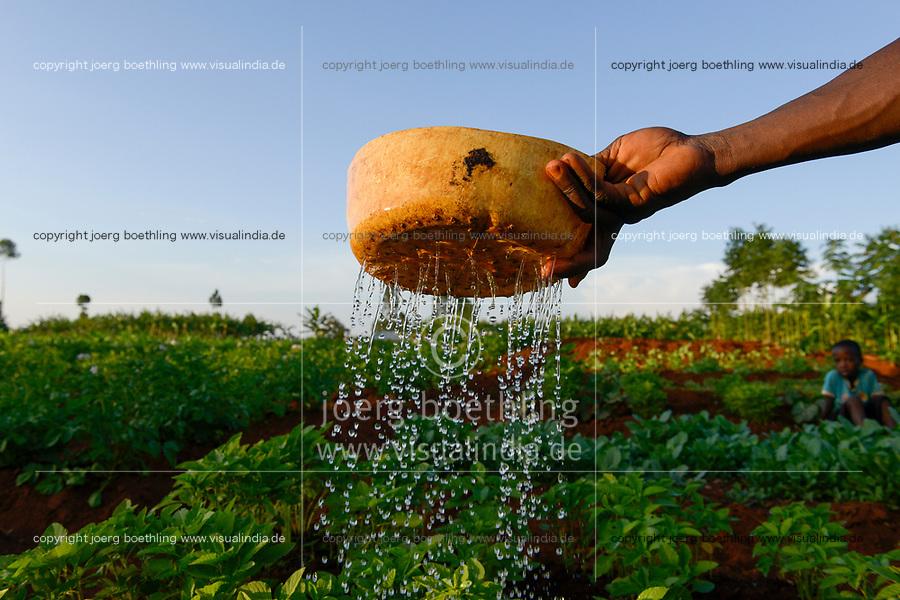 TANZANIA, Tarime District, village Kewamaba, farmer irrigates vegetable field / TANSANIA, Kleinbauer bewaessert den Gemuesegarten am Abend