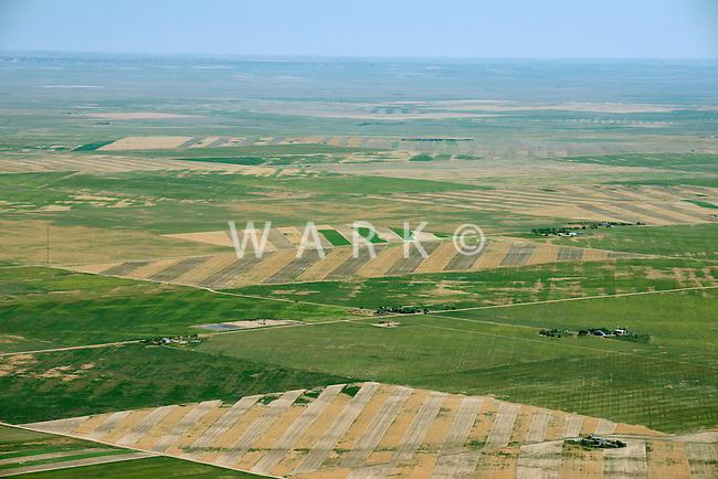 Colorado eastern plains, farmland NE of Greeley.  July 2013. 89928