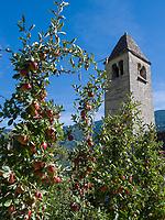 Prokulus-Kapelle in Naturns, Vinschgau, Region Südtirol-Bolzano, Italien, Europa<br /> Prokulus Chapel in Naturns, Vinschgau, Region South Tyrol-Bolzano, Italy, Europe