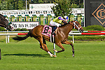 20 June 2009: Battle of Hastings (GB) wins the Colonial Turf Cup (Gr II) stakes race. Battle of Hastings is ridden by Tyler Baze, owned by M. House and trained by J. Mullins.