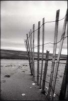 Broken dune fence<br />