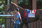 September 19, 2015. Cotillion Stakes contender Keen Pauline. I'm a Chatterbox, Florent Geroux up,  wins the $1,000,000 Grade I Cotillion Stakes, one and 1/16th miles for three-year-old fillies, at  Parx Racing in Bensalem, PA. Trainer is Larry Jones; owners are Fletcher and Carolyn Gray (Joan Fairman Kanes/ESW/CSM)