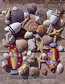 Interlitho-Alberto, STILL LIFE STILLEBEN, NATURALEZA MORTA, paintings+++++,shells,KL16494,#i#, EVERYDA,maritime,beach,fishing gear
