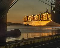 Port of Savannah and Madrid Express October 20, 2021