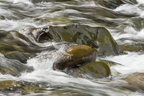 Sol Duc River.  Olympic Peninsula, WA.