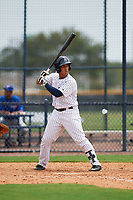 GCL Yankees East designated hitter Malvin Del Orbe (25) at bat during the second game of a doubleheader against the GCL Blue Jays on July 24, 2017 at the Yankees Minor League Complex in Tampa, Florida.  GCL Yankees East defeated the GCL Blue Jays 7-3.  (Mike Janes/Four Seam Images)