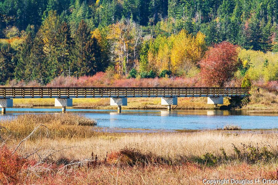 Footbridge crossing the Union Riverr iin Theler Wetlands natural area in Belfair, WA..  Fall color along trail through Theler Wetlands Nature Preserve, on Hood Canal, fiord, Washington, Belfair, Washington.  Trails, hiking, boardwalks and wildlife.
