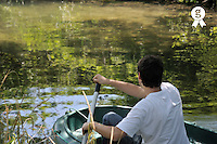 Boy (16)  rowing in a rowboat on river (Licence this image exclusively with Getty: http://www.gettyimages.com/detail/83154152 )