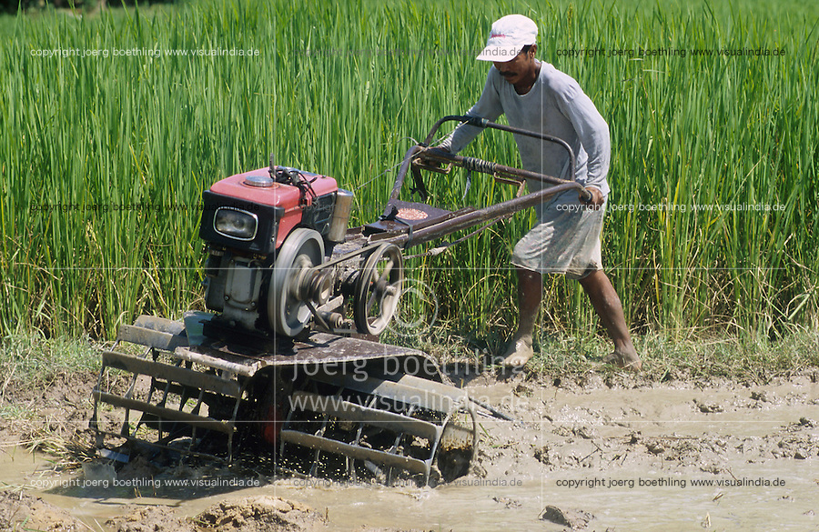 PHILIPPINES Palawan, farmer plough paddy field with power tiller / Philippinen Palawan, Bauer pfluegt Reisfeld mit Handtraktor