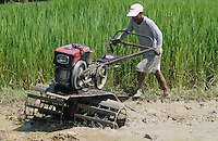 PHILIPPINES Palawan, farmer plough paddy field with power tiller / Philippinen Palawan, Bauer pfluegt Reisfeld mit Handtraktor