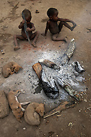Pygmy Refugee Children with Dogs Around Fire..When Pygmies lose their forest, they have nothing left.