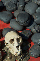A Monkey skull is been sold along side the Ammonite Fossils at a Market in Kathmandu the local use these as religious objects on their shrine at home or in Temples