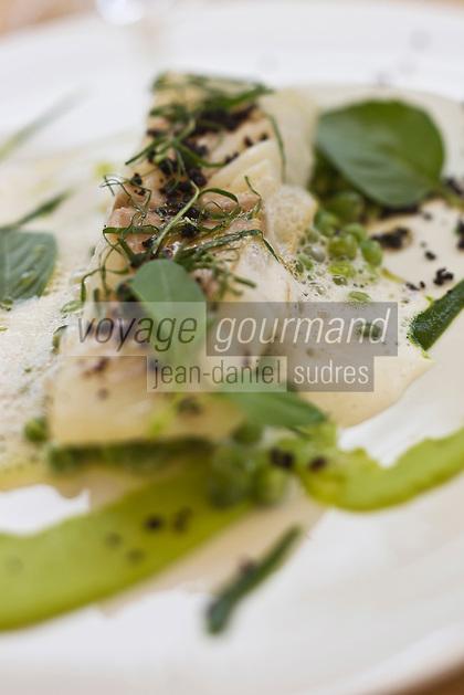 Europe/France/Midi-Pyrénées/31/Haute-Garonne/Quint-Fonsegrives: Sylvain Joffre  restaurant: En pleine nature