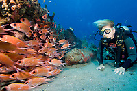 Lisa Hansen with school of squirrelfish at Double Wreck, Statia (St. Eustatius), Caribbean.