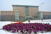 Baotou Iron and Steel (Group) Company, Limited in Baotou, Inner Mongolia, China..31 Dec 2005