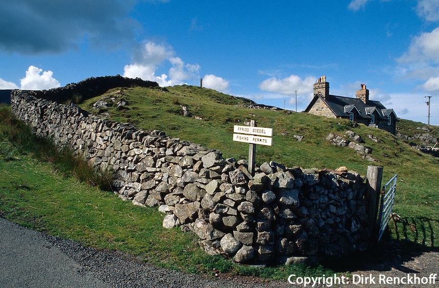 Großbritannien, Wales, Berglandschaft bei Cader Idris