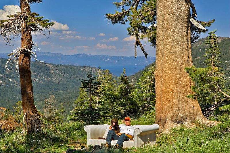 Man with dog on couch above Lake Tahoe. California