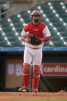 Palm Beach Cardinals catcher Dennis Ortega (28) during a Florida State League game against the Clearwater Threshers on August 11, 2019 at Roger Dean Chevrolet Stadium in Jupiter, Florida.  Palm Beach defeated Clearwater 4-1.  (Mike Janes/Four Seam Images)