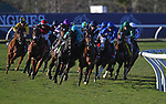 DEL MAR, CA - NOVEMBER 04: The pack rounds the turn during the Longines Breeders' Cup Turf race on Day 2 of the 2017 Breeders' Cup World Championships at Del Mar Racing Club on November 4, 2017 in Del Mar, California. (Photo by Jamey Price/Eclipse Sportswire/Breeders Cup)