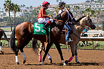 DEL MAR, CA  AUGUST 25:   #5 Tatters to Riches, ridden by Tyler Baze,in the post parade of the Shared Belief Stakes, on August 25, 2018 at Del Mar Thoroughbred Club in Del Mar, CA.(Photo by Casey Phillips/Eclipse Sportswire/Getty ImagesGetty Images