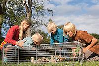 Kinder beobachten Hühnerküken, Küken im Garten, die in einem Freilaufgehege auf dem Rasen leben, artgerechte Tierhaltung, glückliche Hühner, Zwerghuhn, Zwerghühner, Landidylle, Idylle
