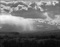 """""""Distant Rainstorm"""" <br /> Denali National Park, Alaska <br /> <br /> A rainstorm rolled through Denali National Park during the summer of 2016. Water was released in big sheets as the storm moved quickly across the landscape."""