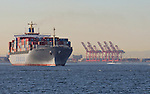 Port of Long Beach, Container Cranes; Container Ship; CSCO, China Ocean Shipping Company, COSCO Group, Ship is the COSCO Antwerp, a dry bulk carrier,