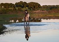 sunset ride at Monte Barrao studfarm, Alentejo, Portugal