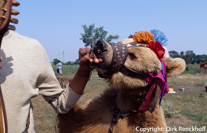 Bulgarien, Zigeuner mit Tanzbär
