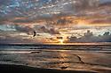 Ponto Kite Sunset