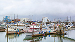 Westport Harbor, Washington.  Charter fishing fleet lies at dockside during stormy weather along the Pacific Coast.