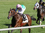 October 08, 2014: Courtier and Jose Lezcano win the 6th race, Maiden for 2 year olds at Keeneland.  Candice Chavez/ESW/CSM