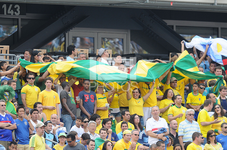 Brazil fans. The Argentina National Team defeated Brazil 4-3 at MetLife Stadium, Saturday July 9 , 2012.
