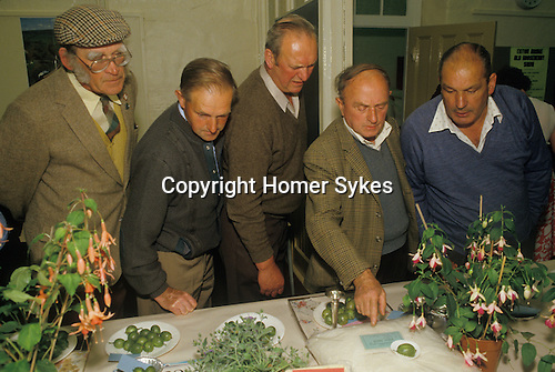 Egton Bridge ,Yorkshire. 1990's  <br /> The Egton Bridge Old Gooseberry Society holds its annual competition each August. Locals scrutinise the winning berries. They are either red or green and can weighed in at over 30 drams.