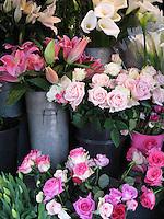 Pretty in Pink, London
