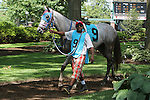 July 18, 2015: Scenes around the track: She's Overwhelming walks in the paddock before race 5, a maiden claiming race for fillies and mares 3 and upward, one and 1/16 miles on the turf at Delaware Park in Stanton DE.   Joan Fairman Kanes/ESW/CSM