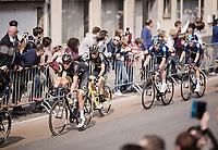Niki Terpstra (NED/Direct Energie)<br /> <br /> 103rd Ronde van Vlaanderen 2019<br /> One day race from Antwerp to Oudenaarde (BEL/270km)<br /> <br /> ©kramon