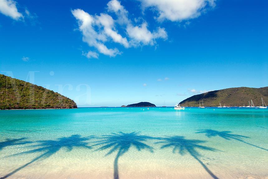Tropical palm tree shadows on beach.