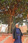 T-063 Carob tree in Kisra